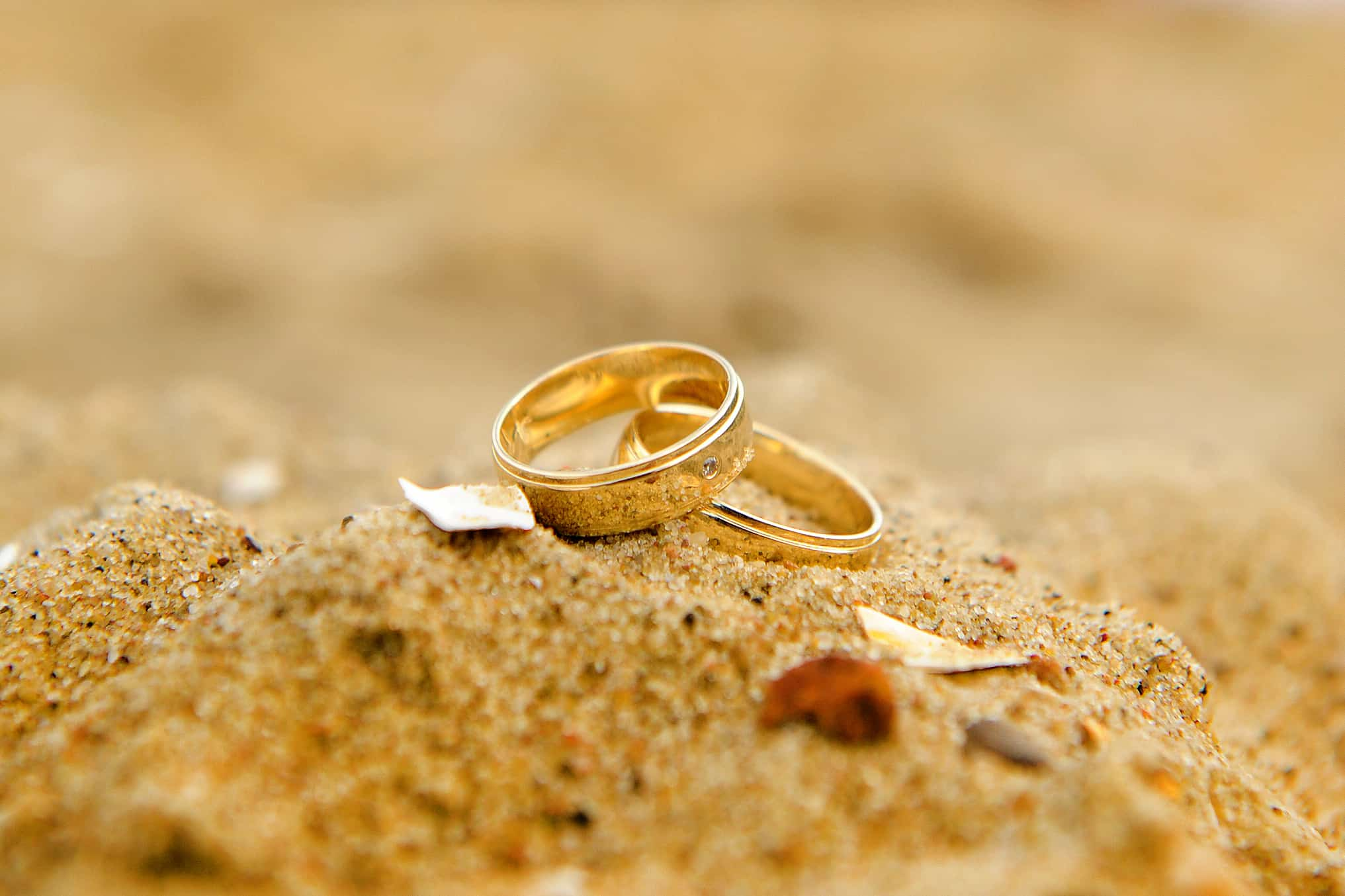 engagement rings card wallpapers - HD 2560×1600